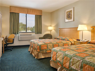 Super 8 JFK Airport NYC Hotel New York (NY) - Two Double Beds