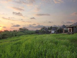 Banjar Kebon, Desa Tangguntiti