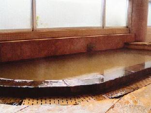 Ishizaka Inn image