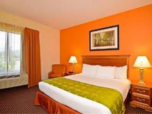 Fairfield Inn And Suites By Marriott Boone Hotel Boone (NC) - Guest Room