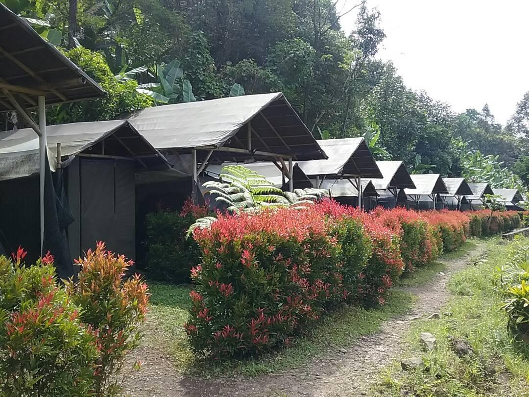 Hotel Herman Lantang Camp - Jalan Gunung Malang - Bogor