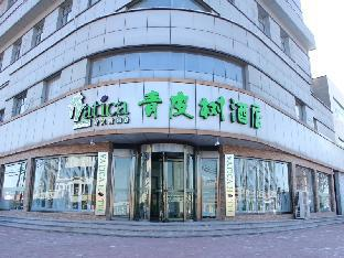 Vatica Tianjin Jinghai Bus Station Home World Plaza Hotel