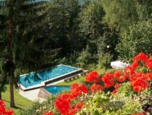 Hotel Lesny Grod Swieradow-Zdroj - Swimming Pool