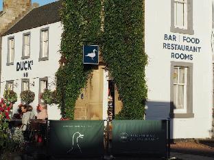 Booking Now ! Ducks Inn