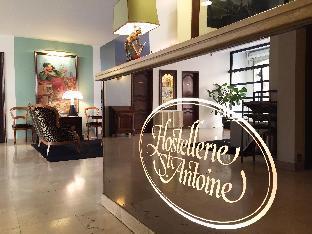 Hostellerie Saint Antoine Альби