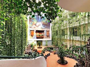Best guest rating in Santa Cruz De La Palma ➦ Sol La Palma Apartamentos takes PayPal