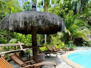 Sepilok Jungle Resort Sandakan - Piscina