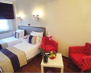 Bakirkoy Tashan Business & Airport Hotel - image 2