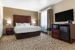 Promos Comfort Suites Plano East - Richardson