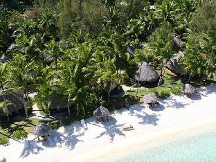 Luxury Beach Bungalow