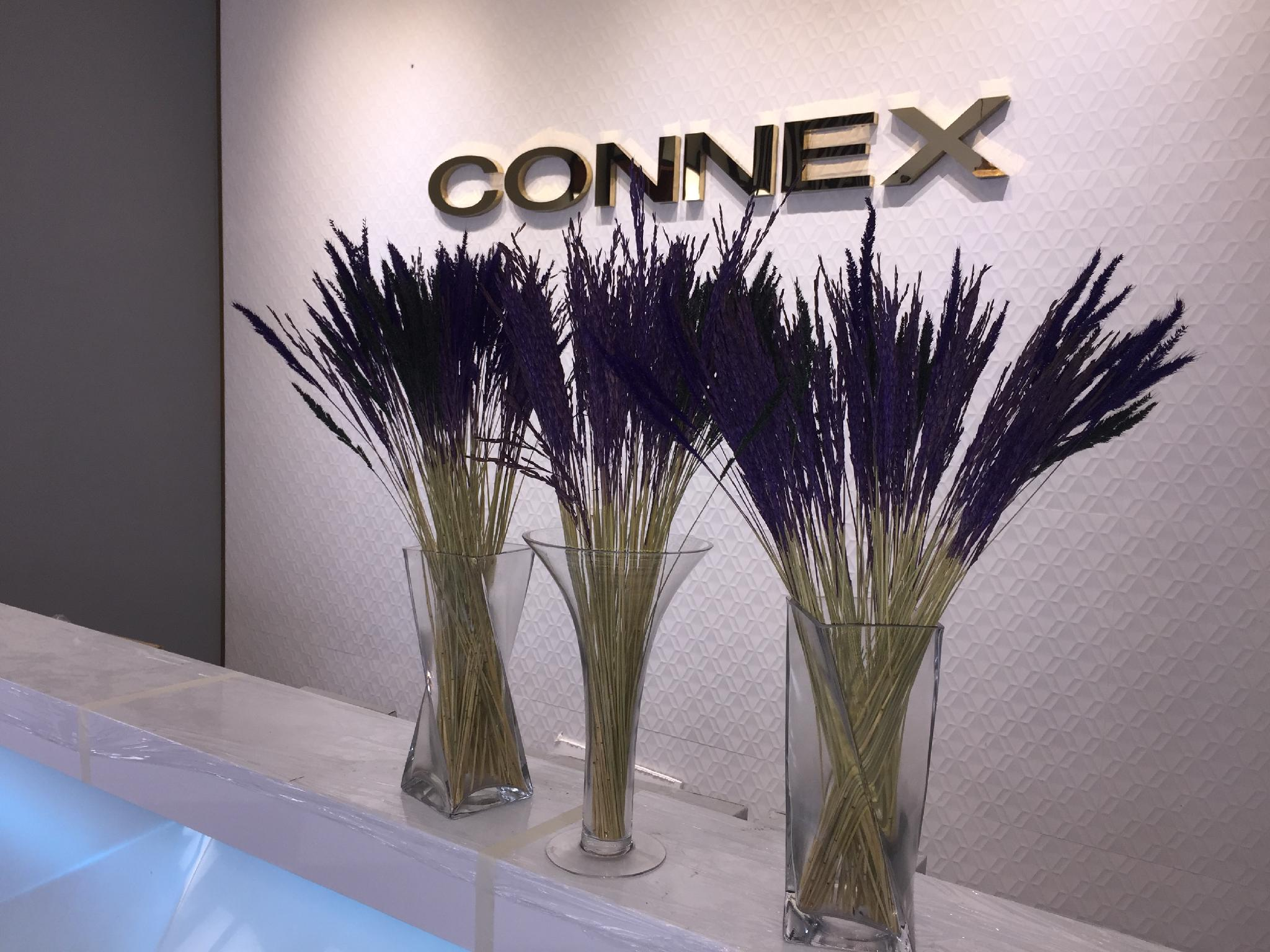 The Connex Asoke