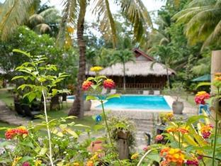 Oasis Beach & Dive Resort Panglao Island - Oasis resort swimming pool