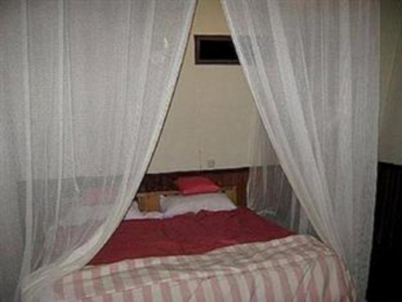 Rimba Orangutan Eco Lodge picture