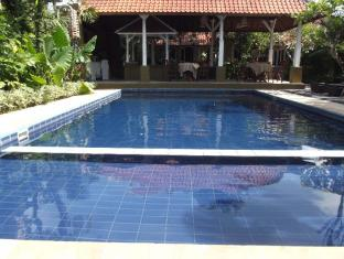 Nyima Inn Bali - Swimming Pool