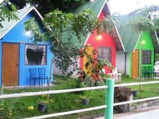 レインボー ロッジ ホームステイ Rainbow Lodge Homestay