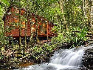 Hotell The Mouses House Rainforest Retreat  i Gold Coast, Australien