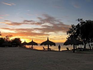 Bluewater Panglao Beach Resort ボホール - ホテルの外観