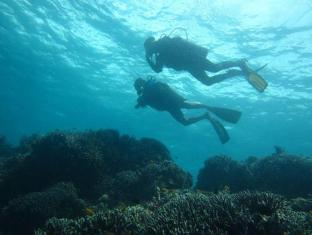 Dive Thru Scuba Resort Ile de Panglao - Sports et loisirs