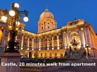Parisien Downtown Apartment Budapest - Nearby Buda castle
