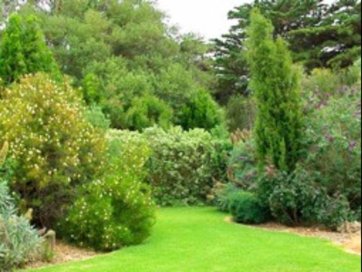 Codrington Gardens Bed & Breakfast photo 2