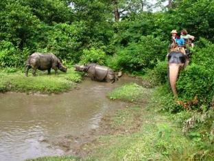 Royal Park Hotel Chitwan - Elephant-back Safari