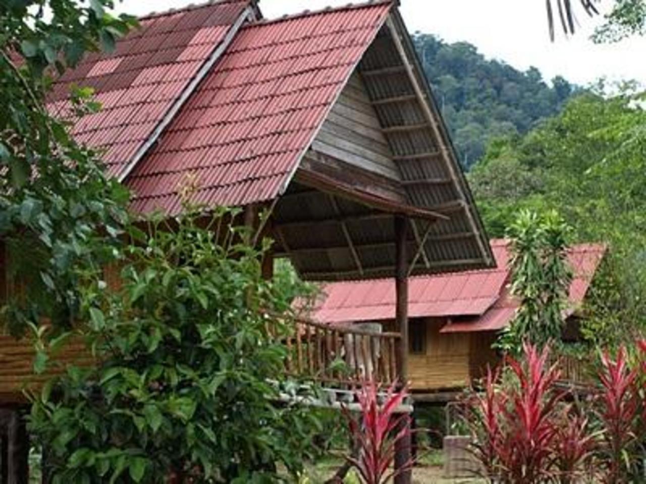 เขาสก ปาล์มวิว รีสอร์ท (Khaosok Palmview Resort)