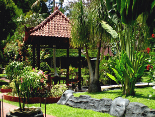 Villa Pisang Mas Bali - Vrt