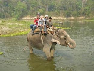 River Bank Inn Chitwan Nationalpark - Umgebung