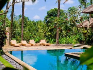 Indigo Tree Bali - Pool and terrace