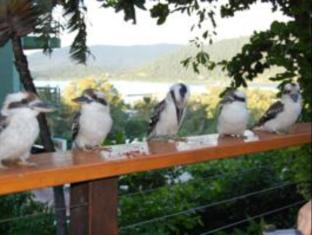 Whitsunday Organic Bed & Breakfast Whitsunday Islands - Parveke/Terassi