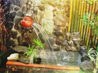 Balay de la Rama Bed and Breakfast Daraga - Fountain