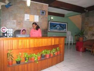 Male City and Airport Hotels | Villingili View Inn Male City and Airport - Reception