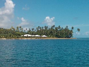 阿罗哈塔妙妮岛海滨草屋酒店