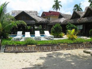 Bitaug Beach Resort Bohol