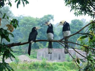 Baghmara Wildlife Resort Parc national de Chitwan - Chambre