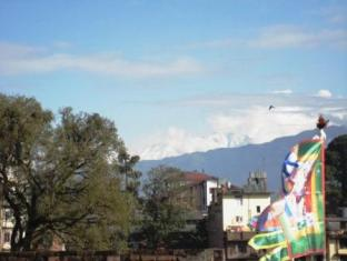 Potala Tourist Home Kathmandu - One fine morning view from the terrace