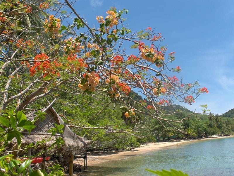 แนะนำที่พักติดทะเล วิวสวย บรรยากาศดีบน เกาะยาวน้อย เกาะยาวใหญ่
