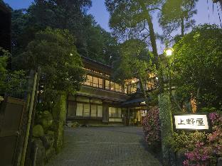 湯河原温泉旅館源泉上野屋 image