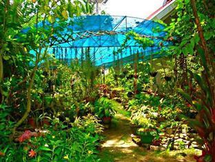 La Estrella Beach Resort Bohol - Garten