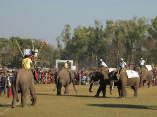 Chitwan Adventure Resort Chitwan National Park - Elephant Football