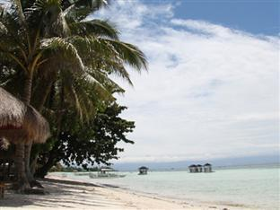 Palm Island Hotel and Dive Resort Bohol - Plaża