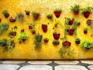 La Casita Del Patio Verde Bed And Breakfast Mexico-stad - Hotel exterieur