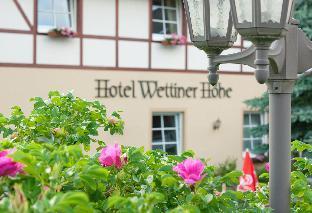 Panorama Berghotel Wettiner Hoehe