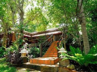 ビバ チェン マイ ヨガ メディテーション ホームステイ Viva Chiang Mai Nature Home Stay