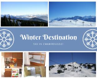 Panoramic view- Comfy Flat - Alps - Ski resort
