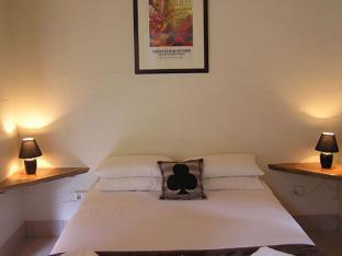 Lync Haven Rainforest Retreat PayPal Hotel Cape Tribulation