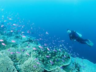 Badian Island Wellness Resort Badian - Scuba Diving