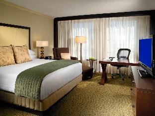 room of Grand Hyatt Atlanta in Buckhead