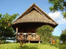Kichanga Lodge Zanzibar Michamvi