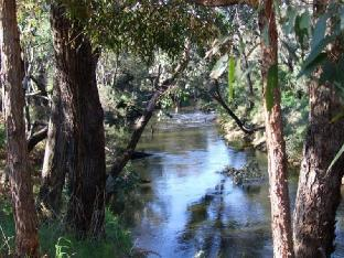 Nannup Riverview Cottage